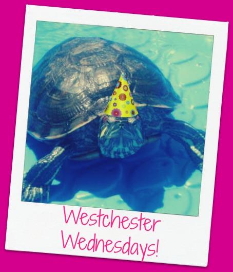 Westchester Wednesdays