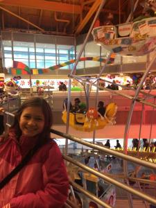 In front of the indoor ferris wheel in Toys R Us