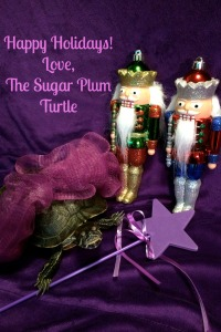 Sugar Plum Turtle