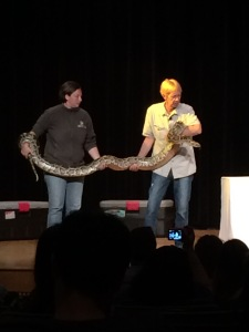 That really is a Burmese Python, he isn't just happy to see me